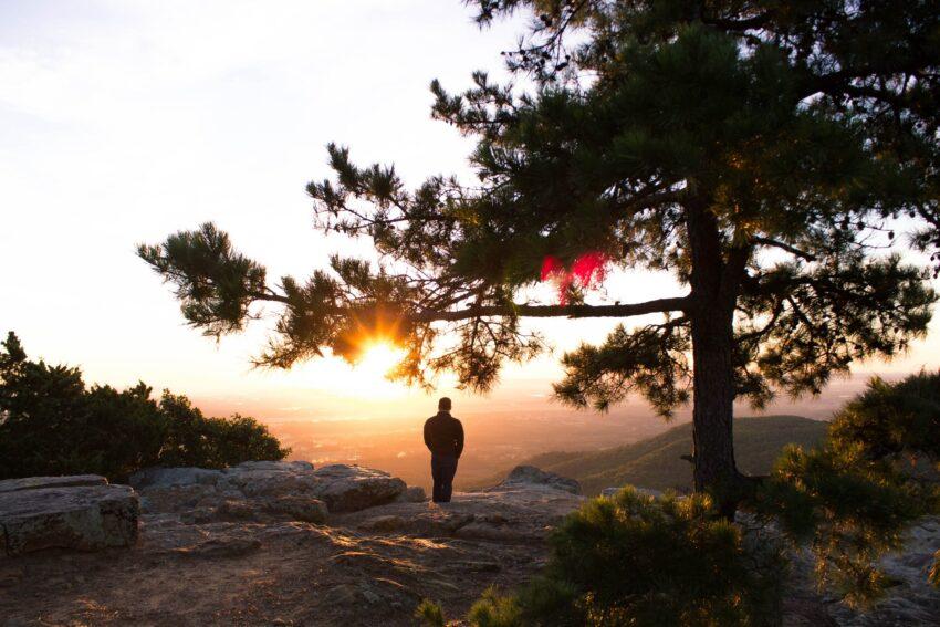 magányos ember hegy oldalán egy fa mellett